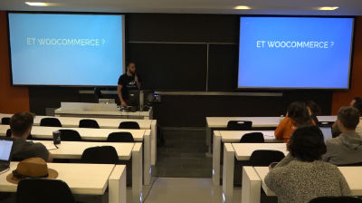 VINCENT GUESNÉ: WordPress en multi-langue gratuitement ? C'est possible
