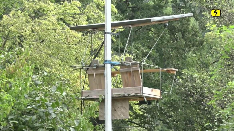 Strafanzeige wegen Jagdschiessanlage in Embrach