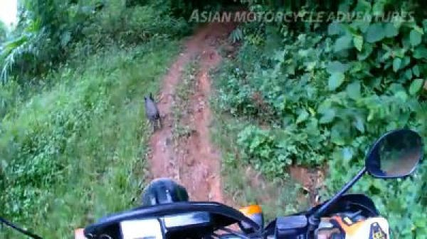 Perry Group - Off-road riding in the Golden Triangle of Thailand.