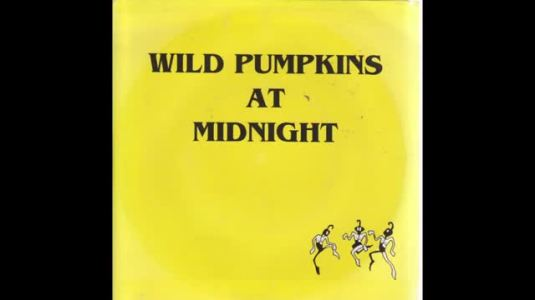 Wild Pumpkins At Midnight - This Machine Is Made Of People