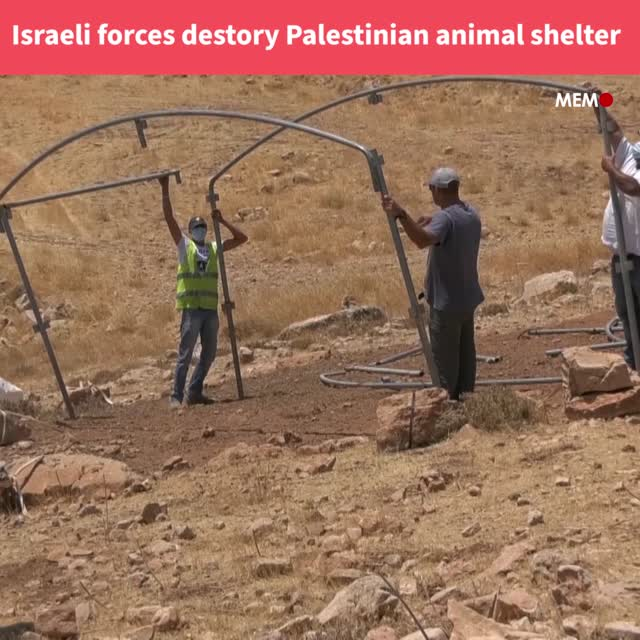 Israel destroys Palestinian animal shelters