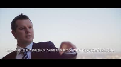 vea-profile-chinese