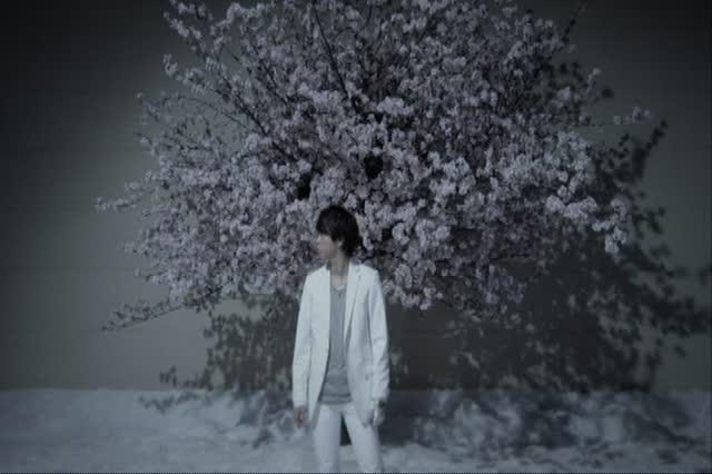 "Arashi Lotus Arashi ""lotus"" pv"