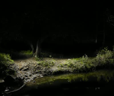 Video of animation of light painting in the landscape harold video animation of light painted landscape by harold ross mozeypictures Image collections