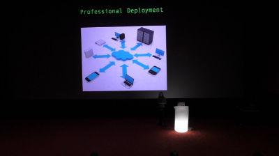 Ivelina Dimova: Professional Deployment