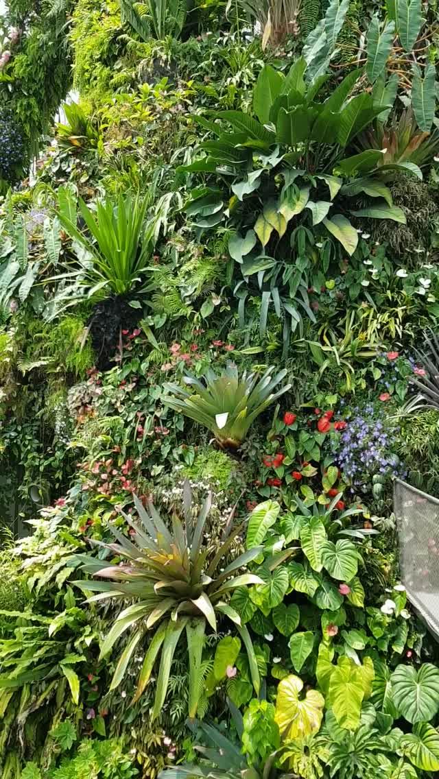 Fabulous giardino verticale singapore with come realizzare - Giardino verticale madrid ...