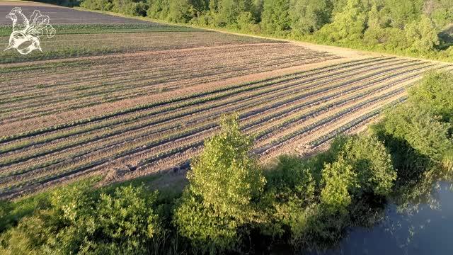 Fisher Hill Farm in Bristol New York