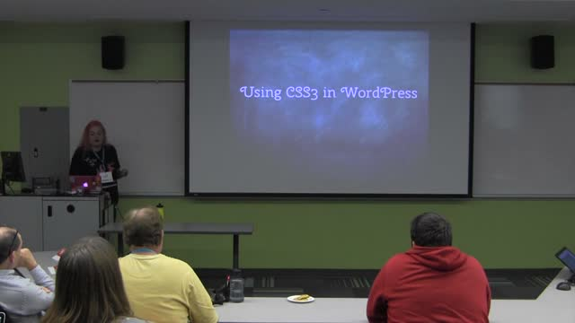 Suzette Franck: How to Use CSS3 in WordPress