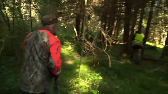 Nachsuche Jagd Graubünden