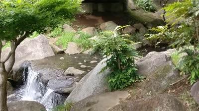 Iwai_stream_arnaud_cousergue