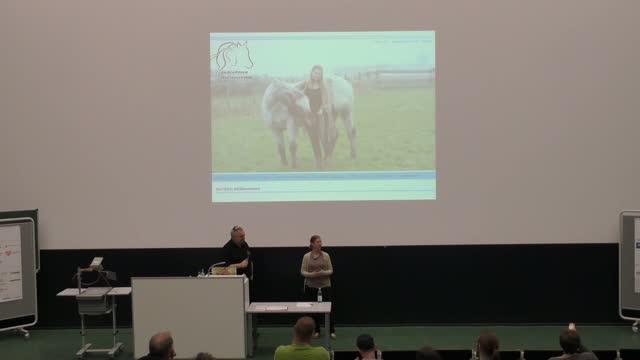 Akki Schubert: Hobby-Blogger – Wie ein Laie zur semi-professionellen Bloggerin wurde