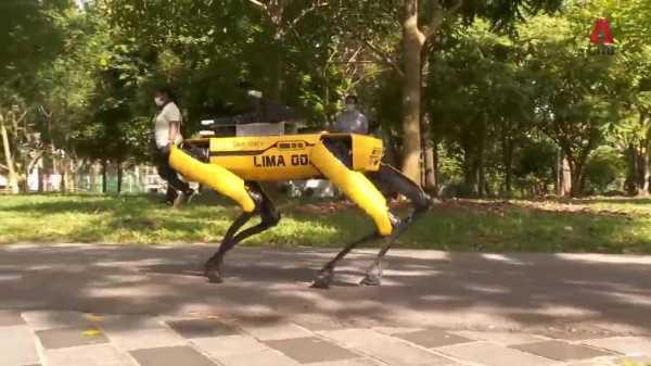 Singapore: Robot dog promoting social distancing