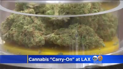 Say What? LAX Airport Will Allow Passengers To Carry Marijuana But TSA Says It's Still A Crime!
